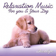 Relaxation Music for You and Your Dog - Llewellyn